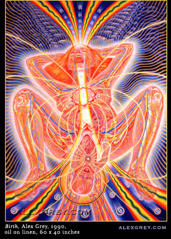gay432osiz  alex grey wallpaper