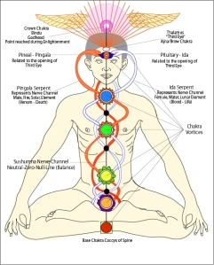 On depiction of the kundalini rising through the nadis, opening the chakras.