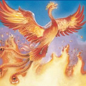 harry-potter-order-phoenix1